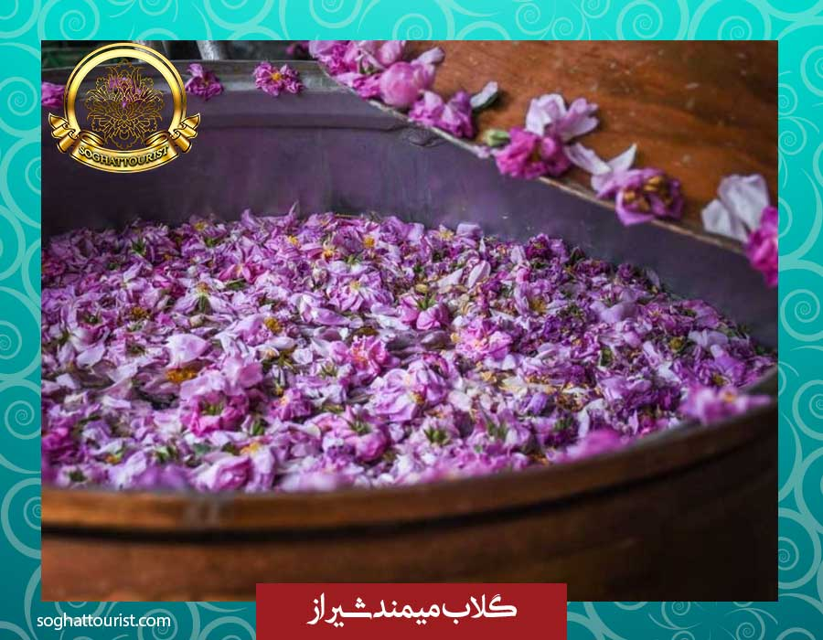 گلاب میمند شیراز
